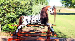 American Spotted Rocking Horse